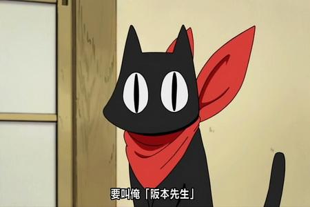 nichijouSakamotoCat