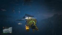 PS4 GTA5 捕鲸历险记 Whale Hunt !